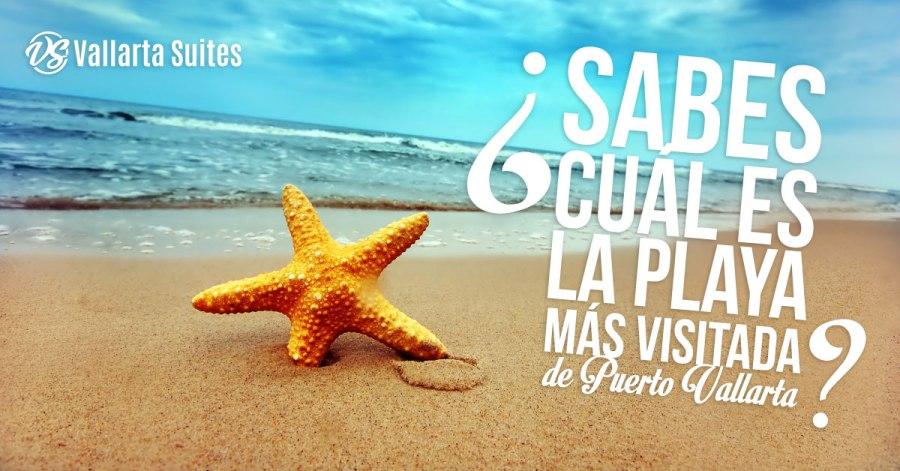 Playa-Los-Muertos-Hostal-Vallarta-Suites